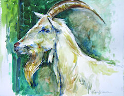 V.Lambe - Billy Goat